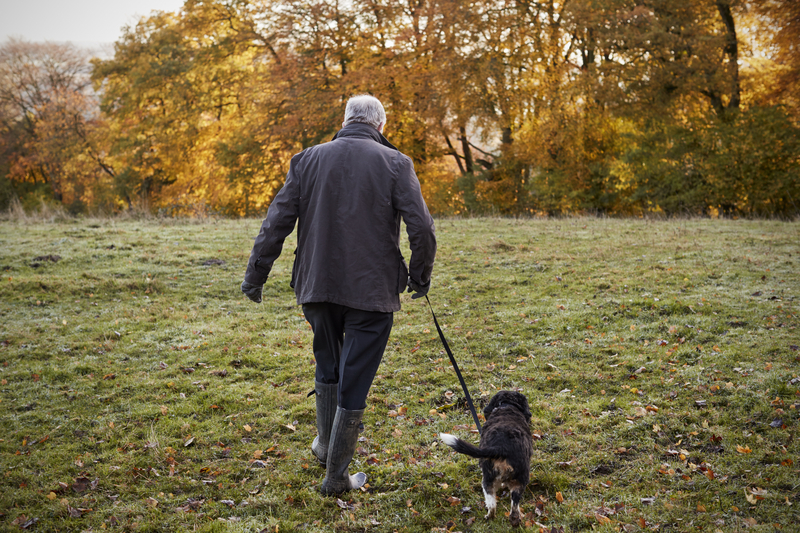 4 free ways to seek arthritis relief, exercise, diet, ask for help